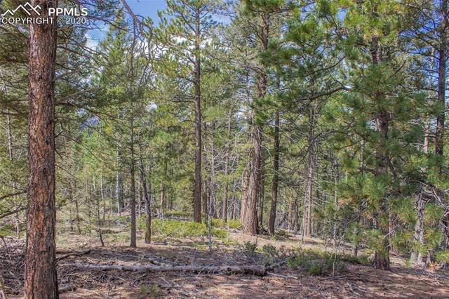 97 Needle Creek Road, Divide, CO 80814 (#6602379) :: Compass Colorado Realty