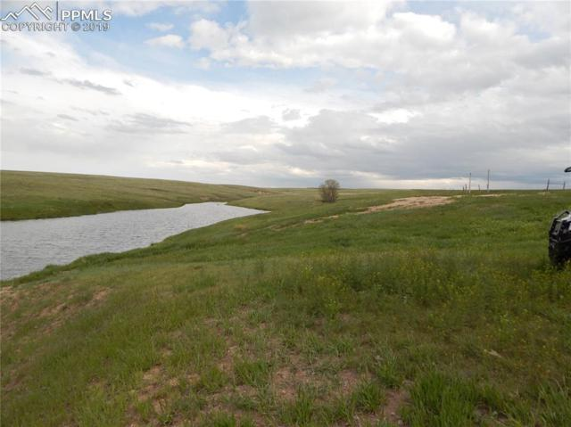 24500- P2 County 37 Road, Elbert, CO 80106 (#6603874) :: Action Team Realty