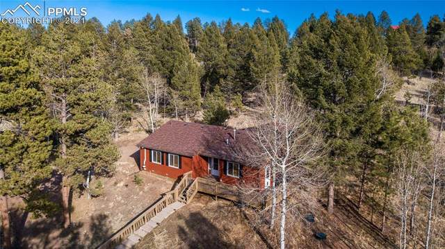48 Big Horn Circle, Florissant, CO 80816 (#6604885) :: Hudson Stonegate Team
