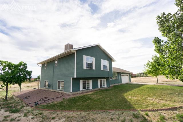 1171 S Calle Del Santo Drive, Pueblo West, CO 81007 (#6604944) :: Group 46:10 Colorado Springs