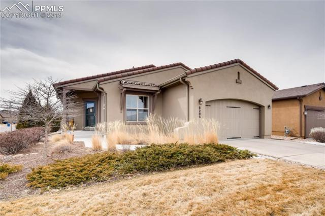 6285 Mount Ouray Drive, Colorado Springs, CO 80924 (#6605780) :: The Daniels Team