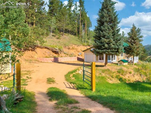 453 Willow Road, Divide, CO 80814 (#6606108) :: Tommy Daly Home Team