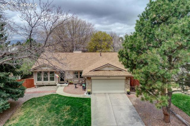 5009 Harvest Road, Colorado Springs, CO 80917 (#6608710) :: The Peak Properties Group