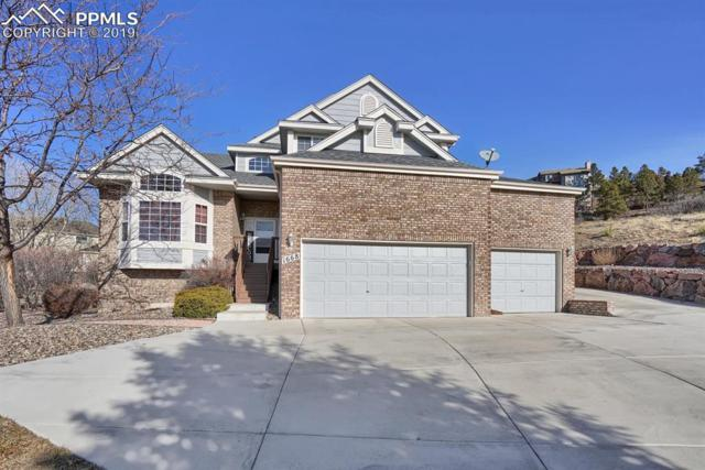 1668 Smoke Ridge Drive, Colorado Springs, CO 80919 (#6609638) :: Tommy Daly Home Team