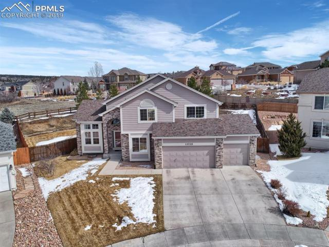 13735 Sand Cherry Place, Colorado Springs, CO 80921 (#6609639) :: The Kibler Group
