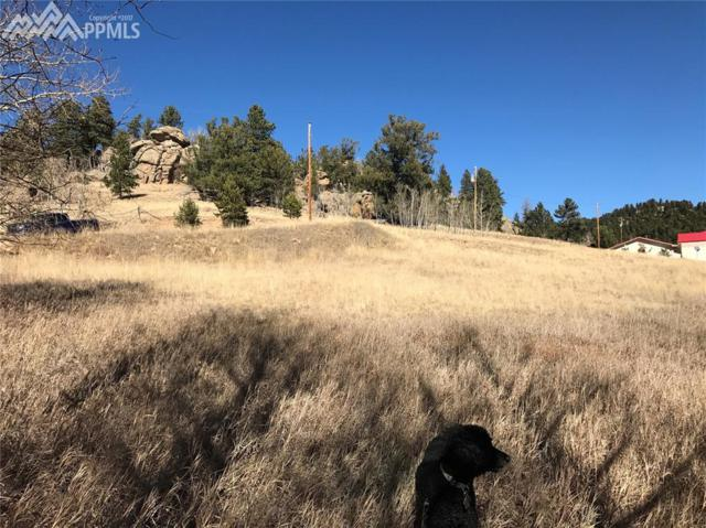 42 Osage Path, Lake George, CO 80827 (#6614700) :: Action Team Realty