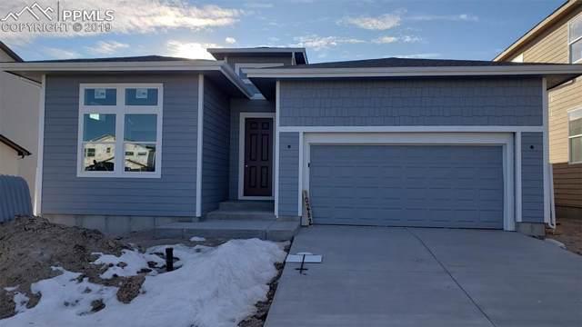 10262 Ravenclaw Drive, Colorado Springs, CO 80924 (#6616674) :: The Treasure Davis Team