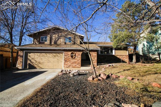 3550 Haven Circle, Colorado Springs, CO 80917 (#6617867) :: 8z Real Estate