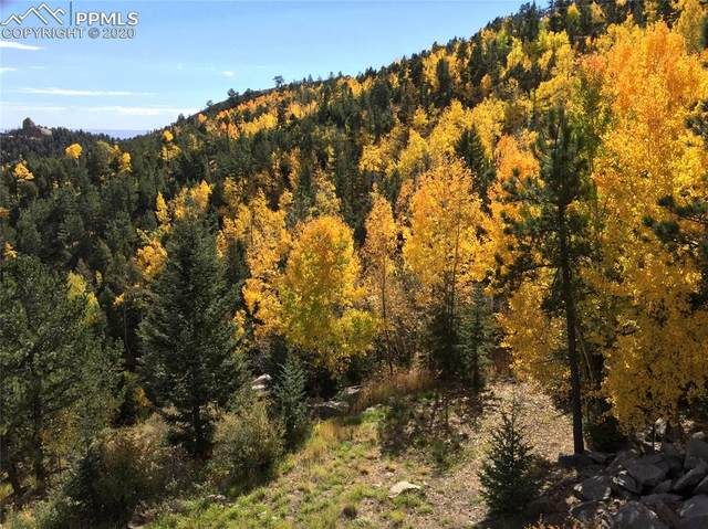 238 Waterfall Loop, Manitou Springs, CO 80829 (#6619405) :: CC Signature Group