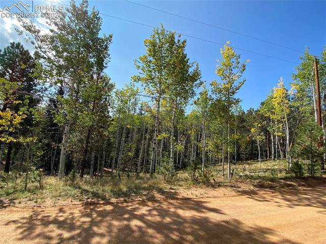 4058 Omer Lane, Divide, CO 80814 (#6623901) :: The Dixon Group
