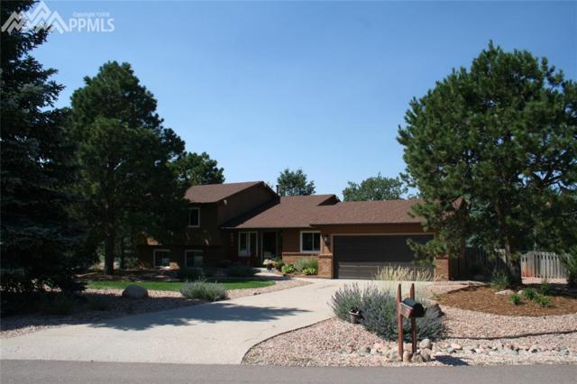 205 Scottsdale Drive, Colorado Springs, CO 80921 (#6626378) :: The Treasure Davis Team