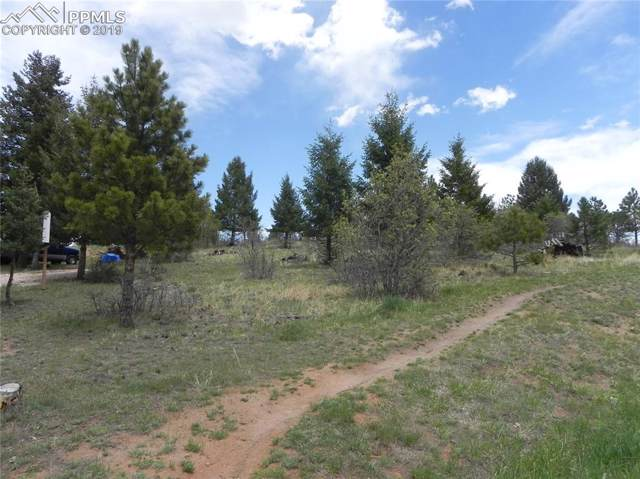 4631 Delaware Drive, Larkspur, CO 80118 (#6632894) :: 8z Real Estate