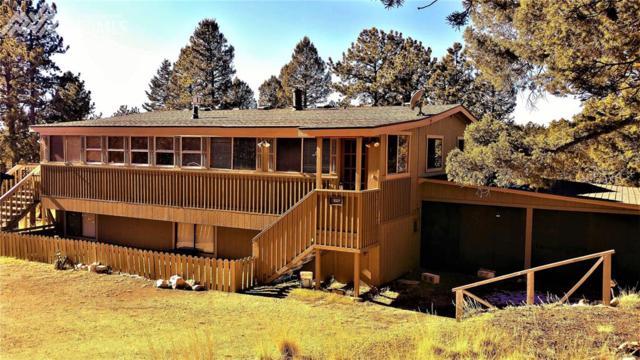 527 Golden Bell Lane, Divide, CO 80814 (#6635127) :: 8z Real Estate