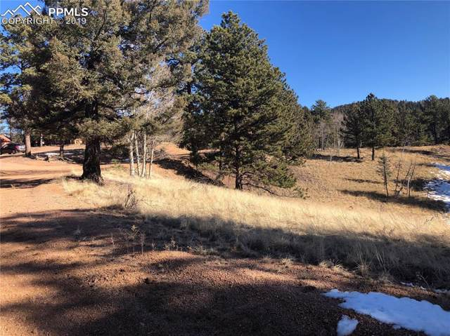 122 Junction Circle, Florissant, CO 80816 (#6638055) :: Action Team Realty