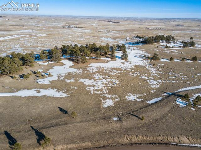 17695 Fremont Fort Drive, Peyton, CO 80831 (#6638186) :: 8z Real Estate