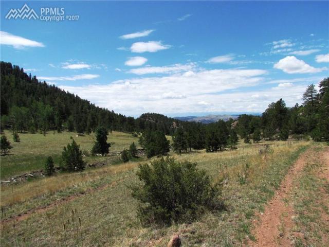 TBD Spring Canyon Ranch Road, Cripple Creek, CO 80813 (#6638287) :: 8z Real Estate