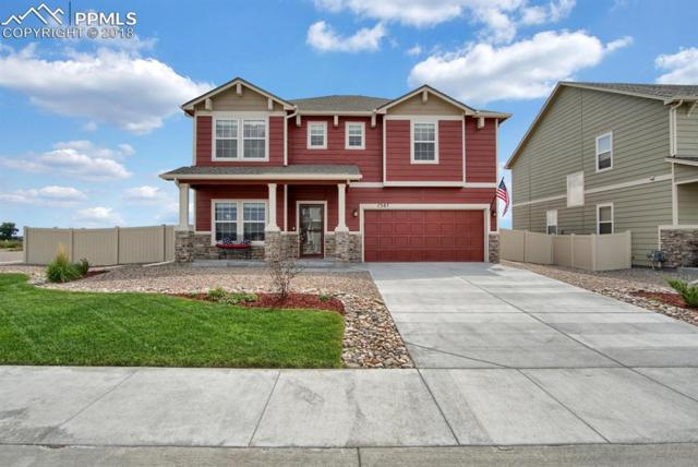 7387 Benecia Drive, Fountain, CO 80817 (#6638303) :: The Dunfee Group - powered by eXp Realty