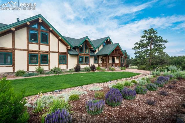 2600 Pheasant Loop, Westcliffe, CO 81252 (#6638544) :: Tommy Daly Home Team