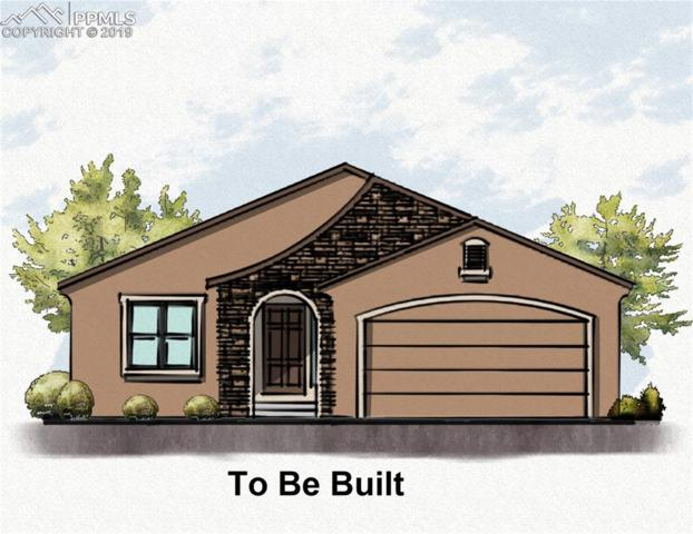 10342 Green Lake Court, Colorado Springs, CO 80924 (#6638635) :: CC Signature Group