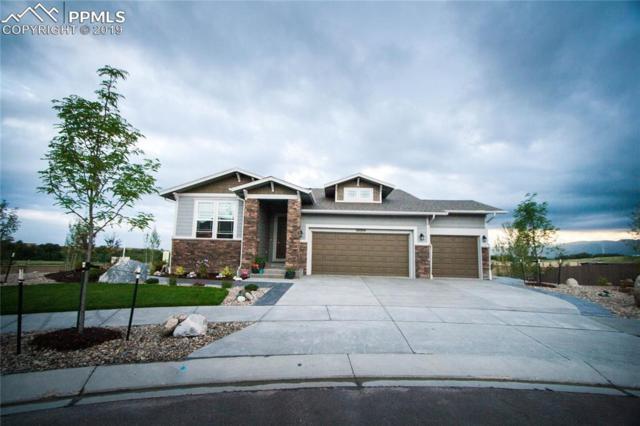 10004 Crews Gulch Court, Colorado Springs, CO 80924 (#6640151) :: 8z Real Estate