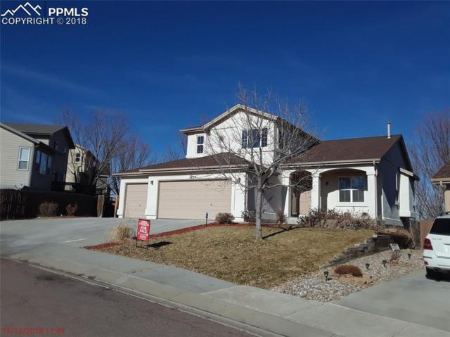 7454 Bentwater Drive, Fountain, CO 80817 (#6641222) :: The Dunfee Group - powered by eXp Realty
