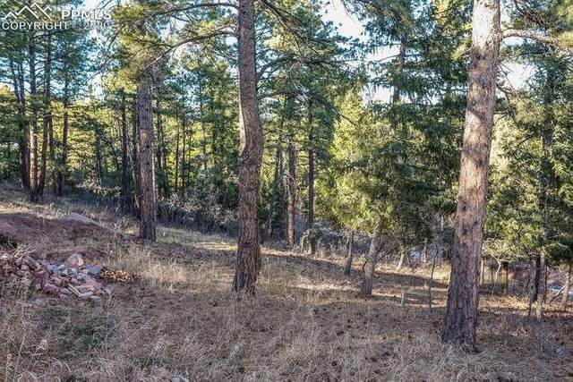 7073 Perry Park Boulevard, Larkspur, CO 80118 (#6642197) :: Finch & Gable Real Estate Co.