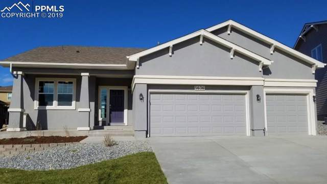 5636 Cubbage Drive, Colorado Springs, CO 80924 (#6646173) :: 8z Real Estate