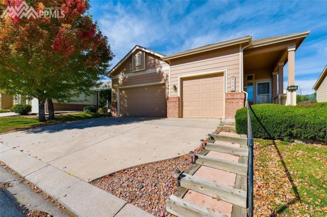 6130 Perfect View, Colorado Springs, CO 80919 (#6647021) :: RE/MAX Advantage
