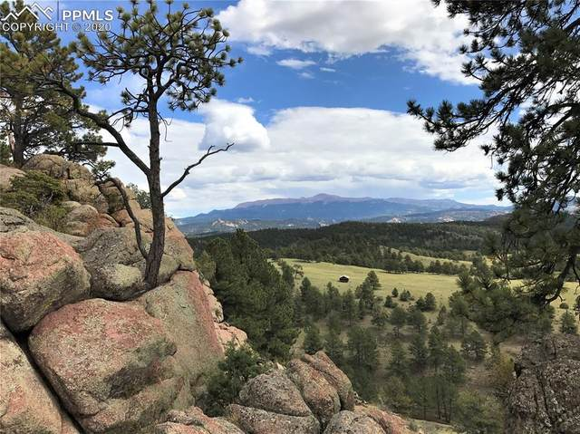 TBD County Road 12, Florissant, CO 80816 (#6649691) :: CC Signature Group