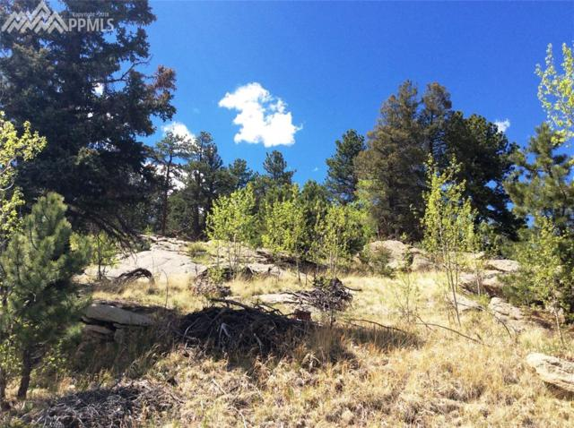 517 Valley Road, Lake George, CO 80827 (#6650945) :: 8z Real Estate
