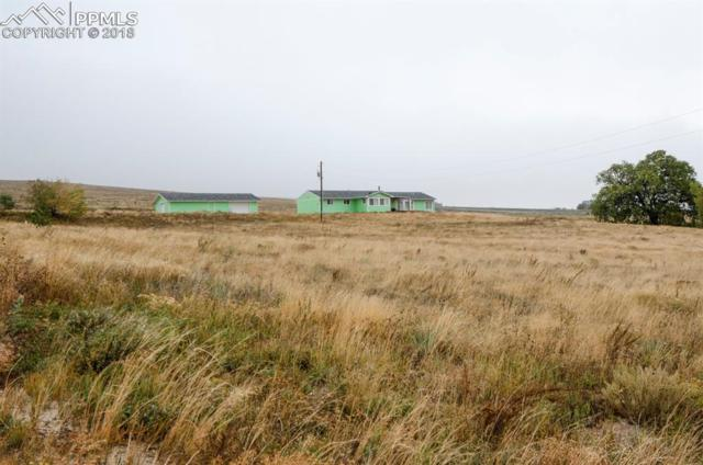 9065 Soap Weed Road, Calhan, CO 80808 (#6658138) :: Colorado Home Finder Realty