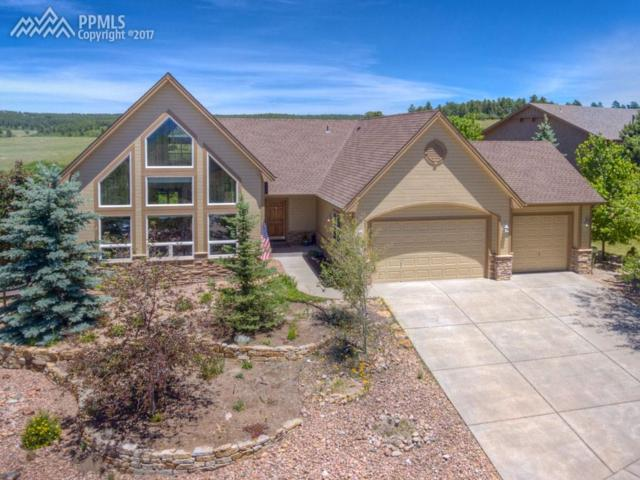 140 Saber Creek Drive, Monument, CO 80132 (#6658250) :: Jason Daniels & Associates at RE/MAX Millennium