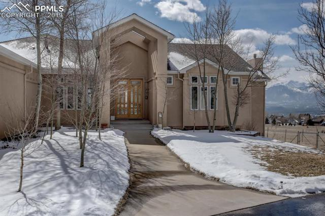 715 Rangely Drive, Colorado Springs, CO 80921 (#6658851) :: CC Signature Group