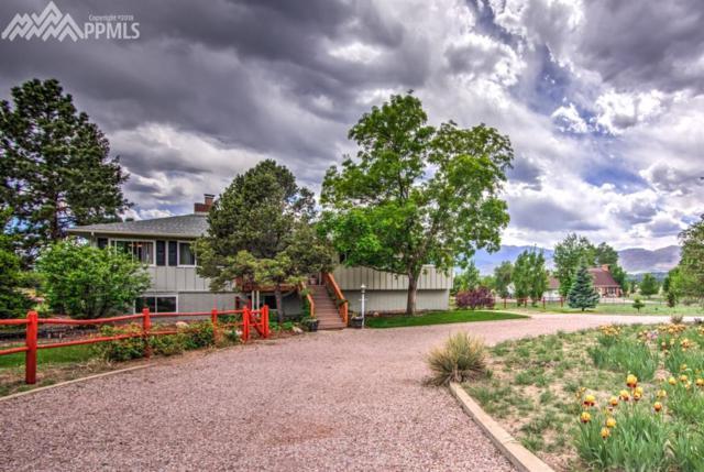 1971 Copley Road, Colorado Springs, CO 80920 (#6661397) :: Fisk Team, RE/MAX Properties, Inc.