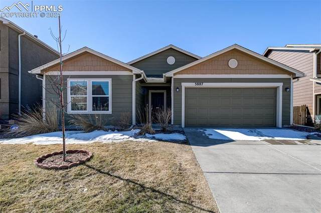 3887 Reindeer Circle, Colorado Springs, CO 80922 (#6664644) :: HomeSmart