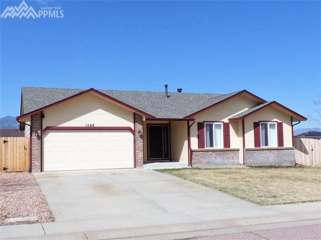 1388 Hollow Rock Drive, Colorado Springs, CO 80911 (#6665614) :: RE/MAX Advantage