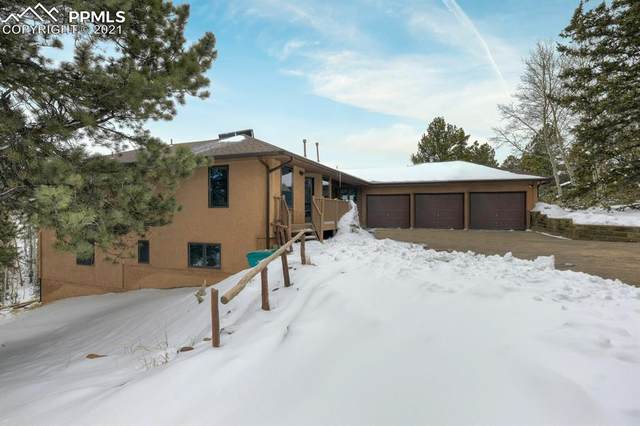 82 Ryolite Road, Florissant, CO 80816 (#6667032) :: The Dixon Group