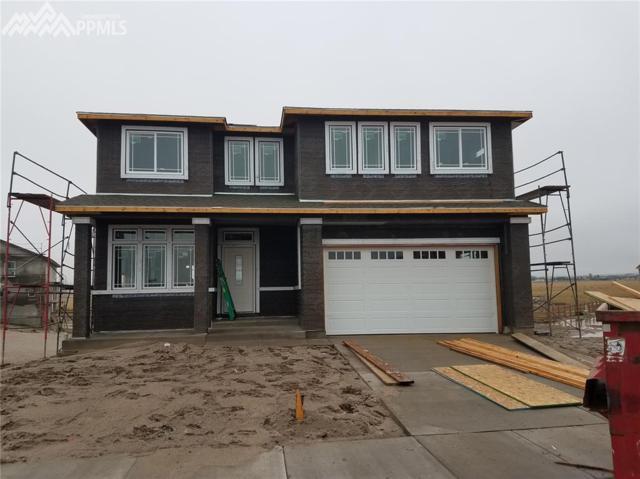 6510 Stonefly Drive, Colorado Springs, CO 80924 (#6667145) :: 8z Real Estate