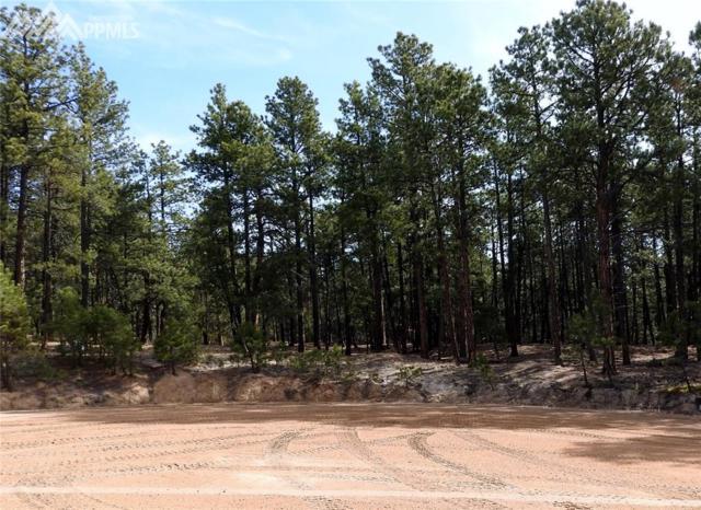 14510 Highway 83, Colorado Springs, CO 80921 (#6670265) :: Colorado Home Finder Realty