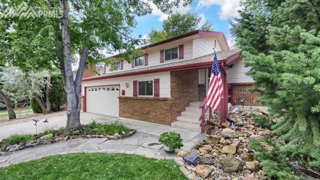 3430 Whimsical Court, Colorado Springs, CO 80917 (#6671259) :: 8z Real Estate