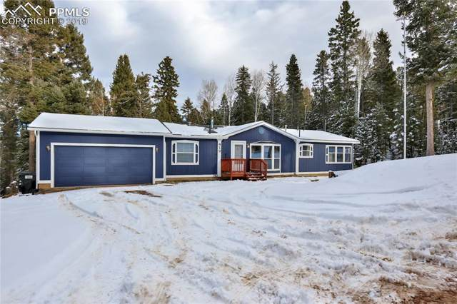 419 Donzi Trail, Florissant, CO 80816 (#6672776) :: Action Team Realty