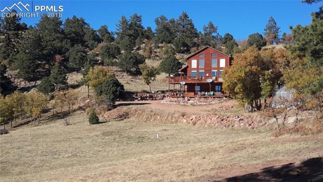 295 Cheyenne Road, Florissant, CO 80816 (#6676041) :: CENTURY 21 Curbow Realty