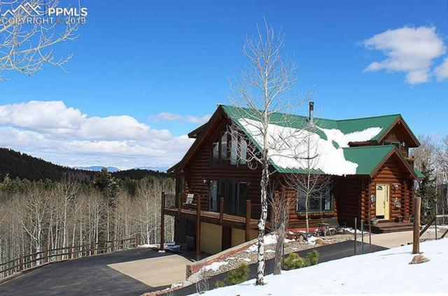 11690 Rampart Range Road, Woodland Park, CO 80863 (#6679363) :: The Dixon Group