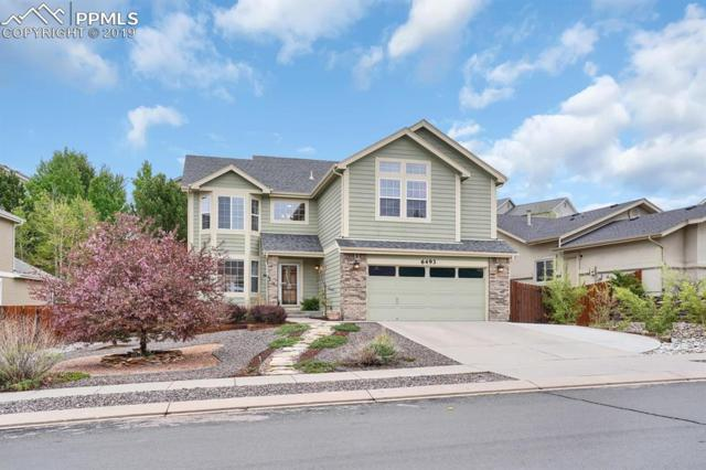 6493 Barrel Race Drive, Colorado Springs, CO 80923 (#6680961) :: The Kibler Group