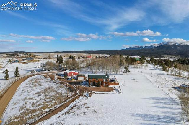 78 Ridge Top Drive, Divide, CO 80814 (#6683160) :: Action Team Realty