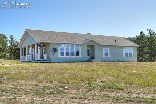 623 Valley Drive, Guffey, CO 80820 (#6683496) :: 8z Real Estate