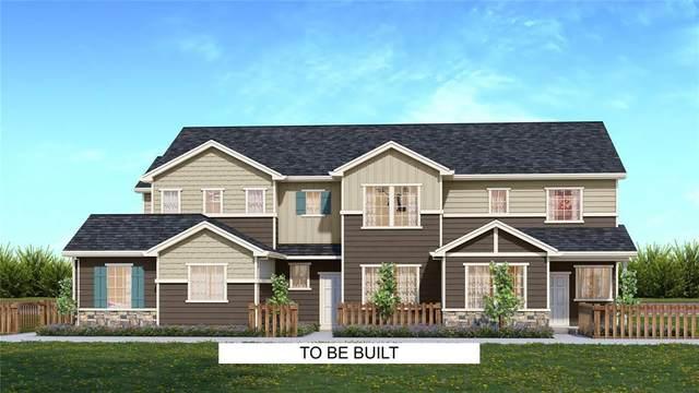 5349 Snowy Egret Grove, Colorado Springs, CO 80924 (#6684275) :: 8z Real Estate