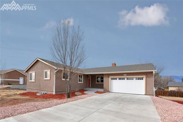 10730 Double D Road, Fountain, CO 80817 (#6684949) :: 8z Real Estate