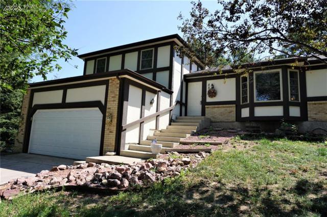 5583 E Old Farm Circle, Colorado Springs, CO 80917 (#6689344) :: 8z Real Estate