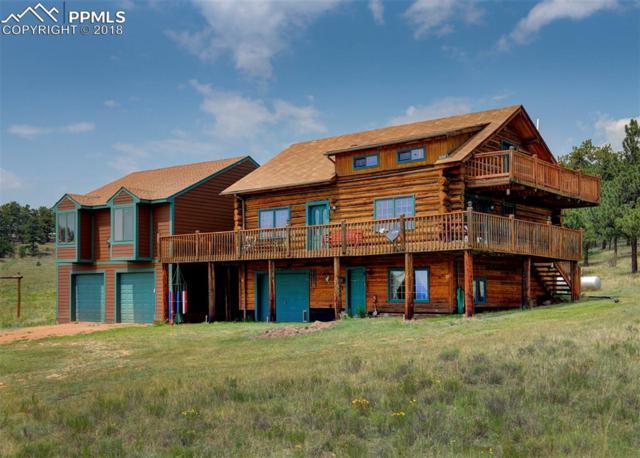 455 Castle Mountain Pass, Guffey, CO 80820 (#6690565) :: Jason Daniels & Associates at RE/MAX Millennium
